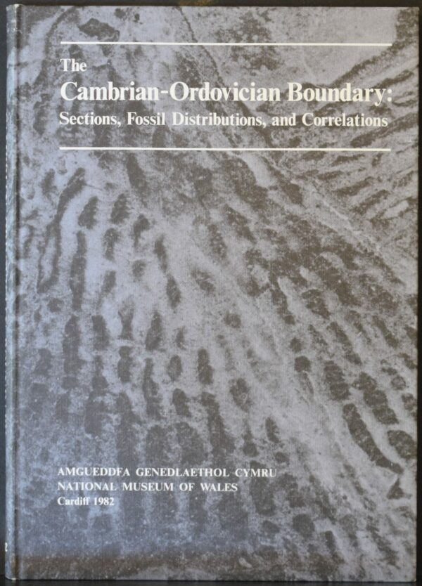 The Cambrian-Ordovician Boundary